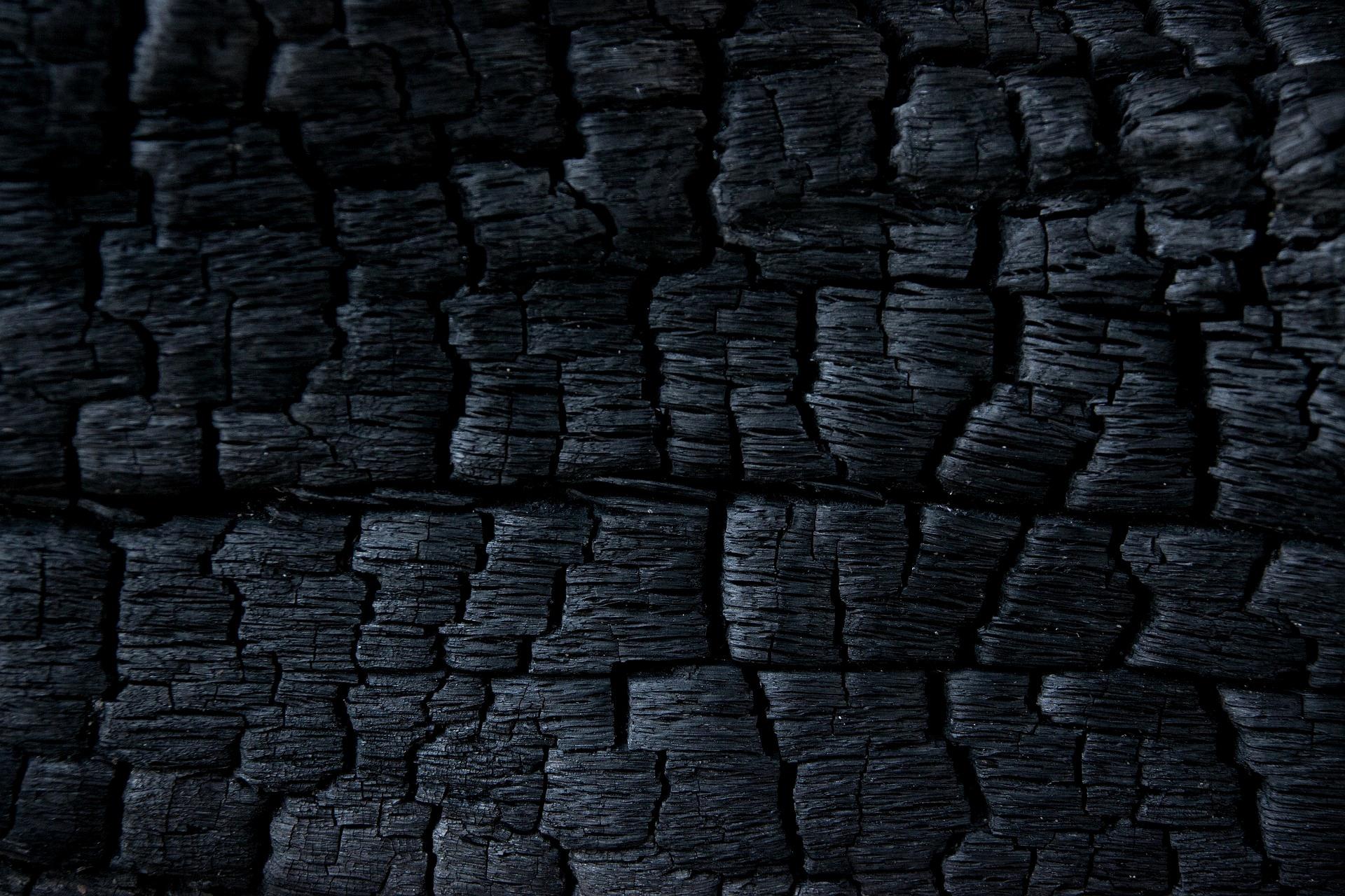 Por Qué Urge Cambiar La Receta Del Carbón Vegetal En