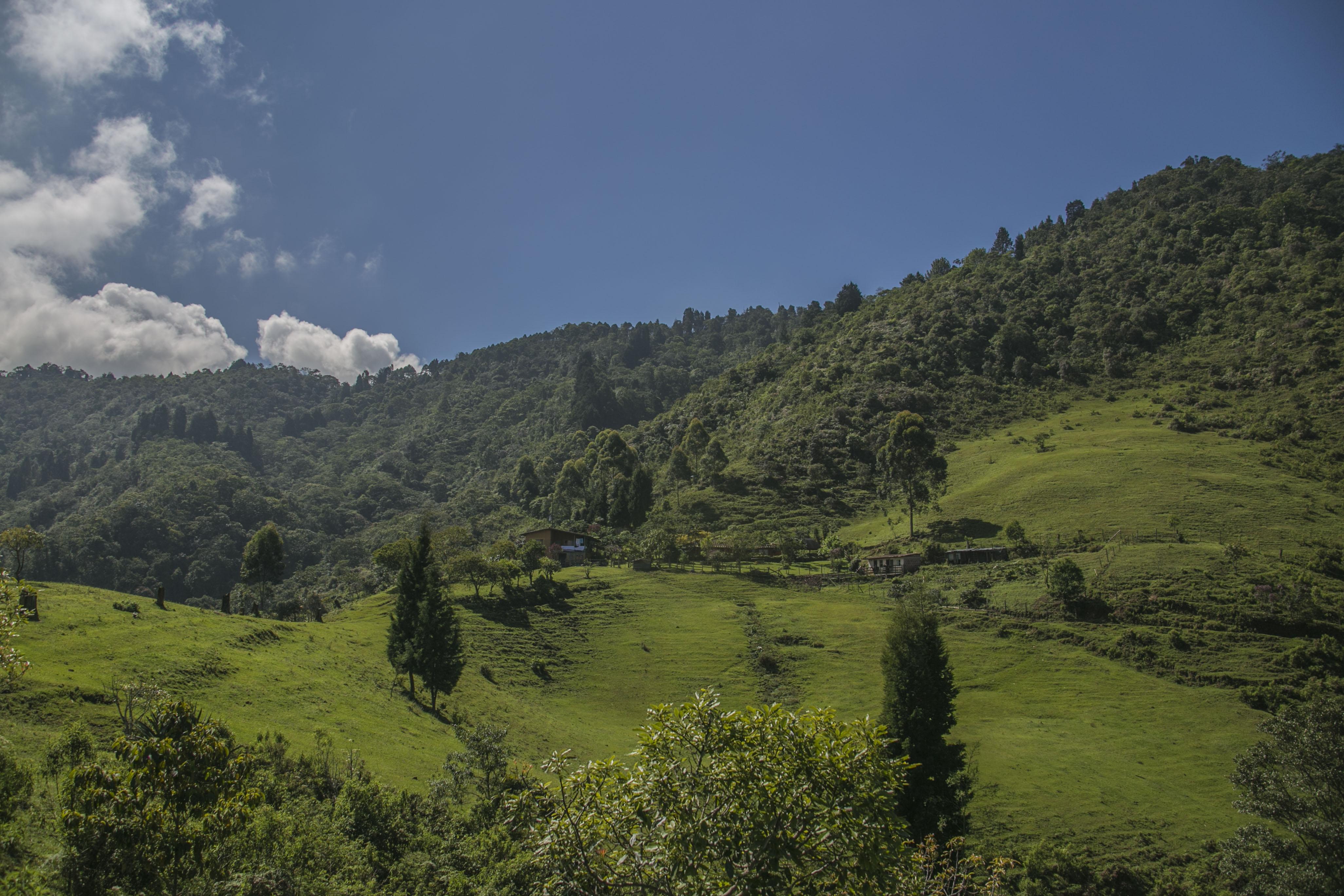 376 mil nuevos metros cuadrados para zonas de protección en Sabaneta (Colombia)