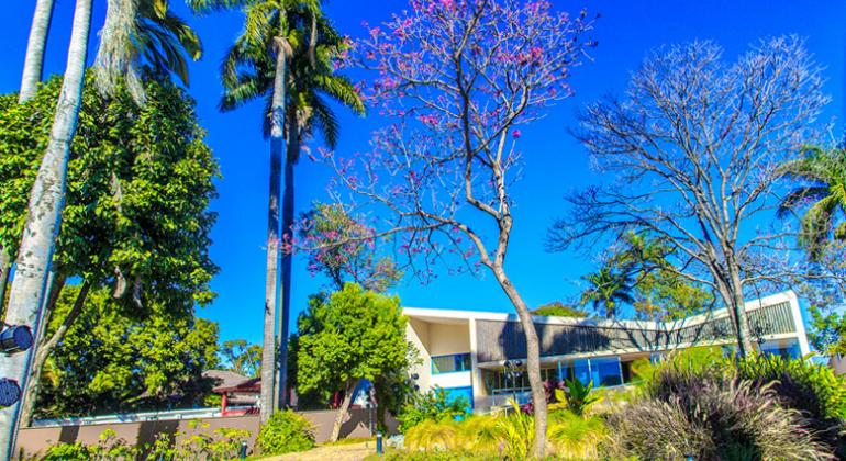 Museo en Belo Horizonte regala plantas a sus visitantes