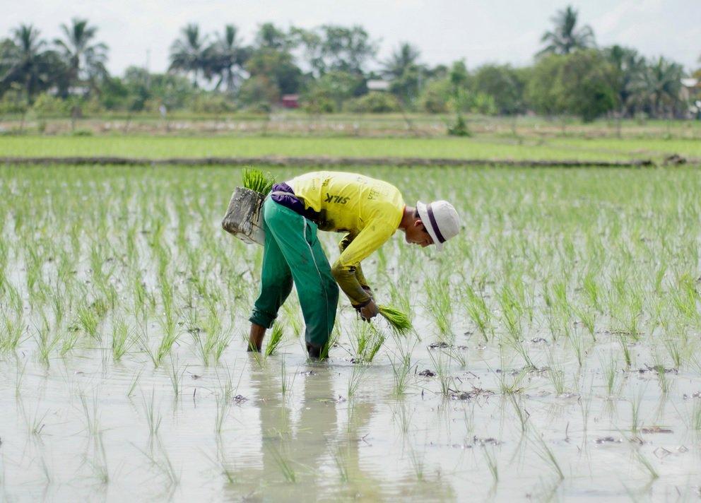 Seguridad alimentaria y nutricional, compromiso de los alcaldes salvadoreños