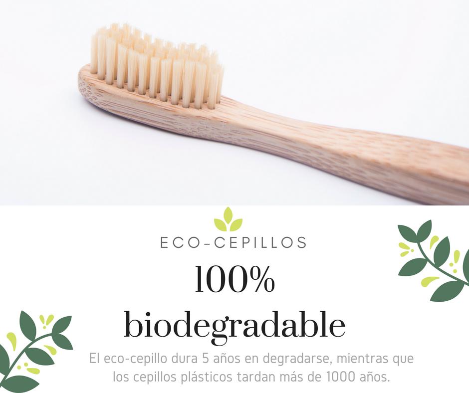 ¿Y si tu cepillo de dientes fuera ecológico, de bambú?