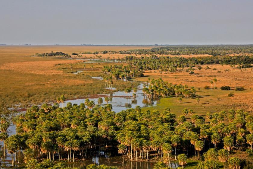 Nuevo Parque Nacional en Argentina, la esperanza para muchas especies