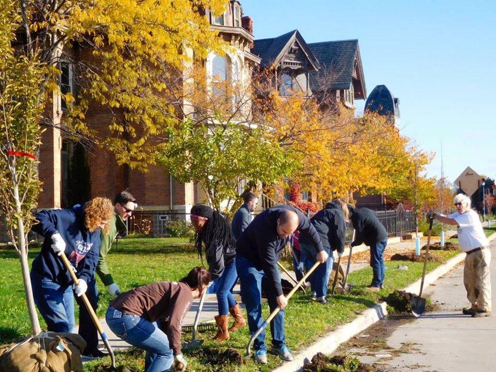 ¿Por qué hay personas que rechazan la siembra de árboles en una ciudad?