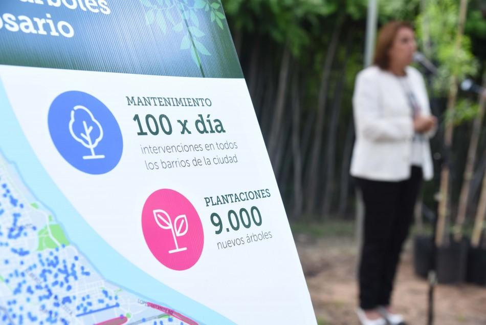 Rosario presentó su Plan de Gestión del Arbolado para 2019