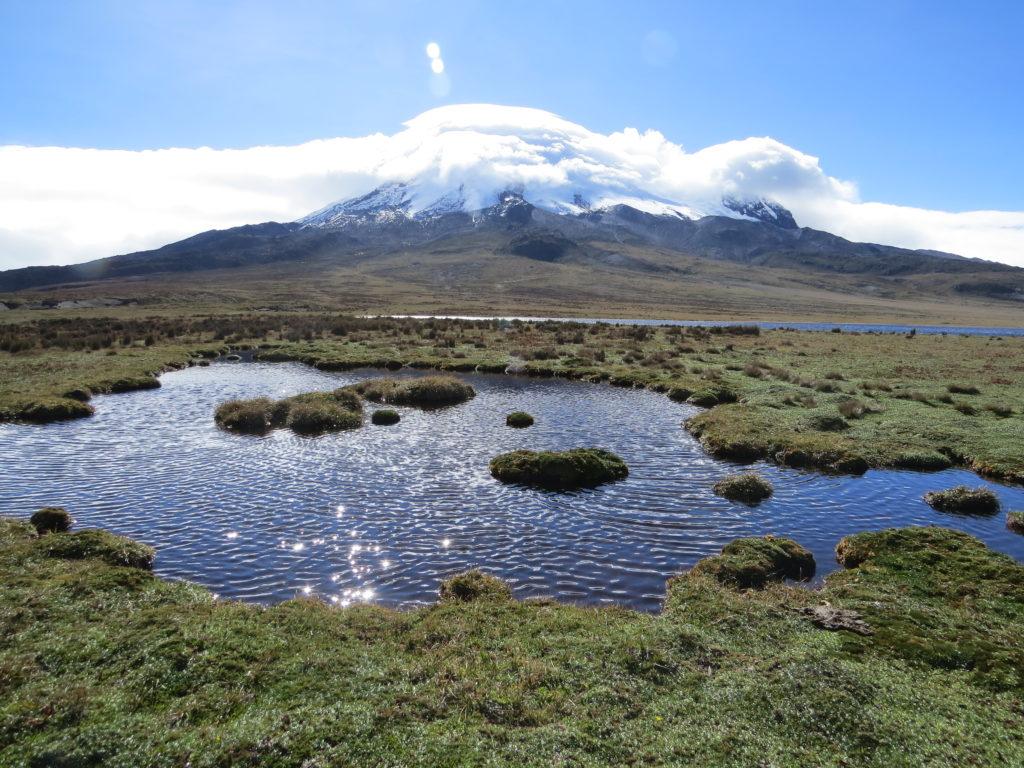 Ecuador recibe recursos por haber reducido su deforestación