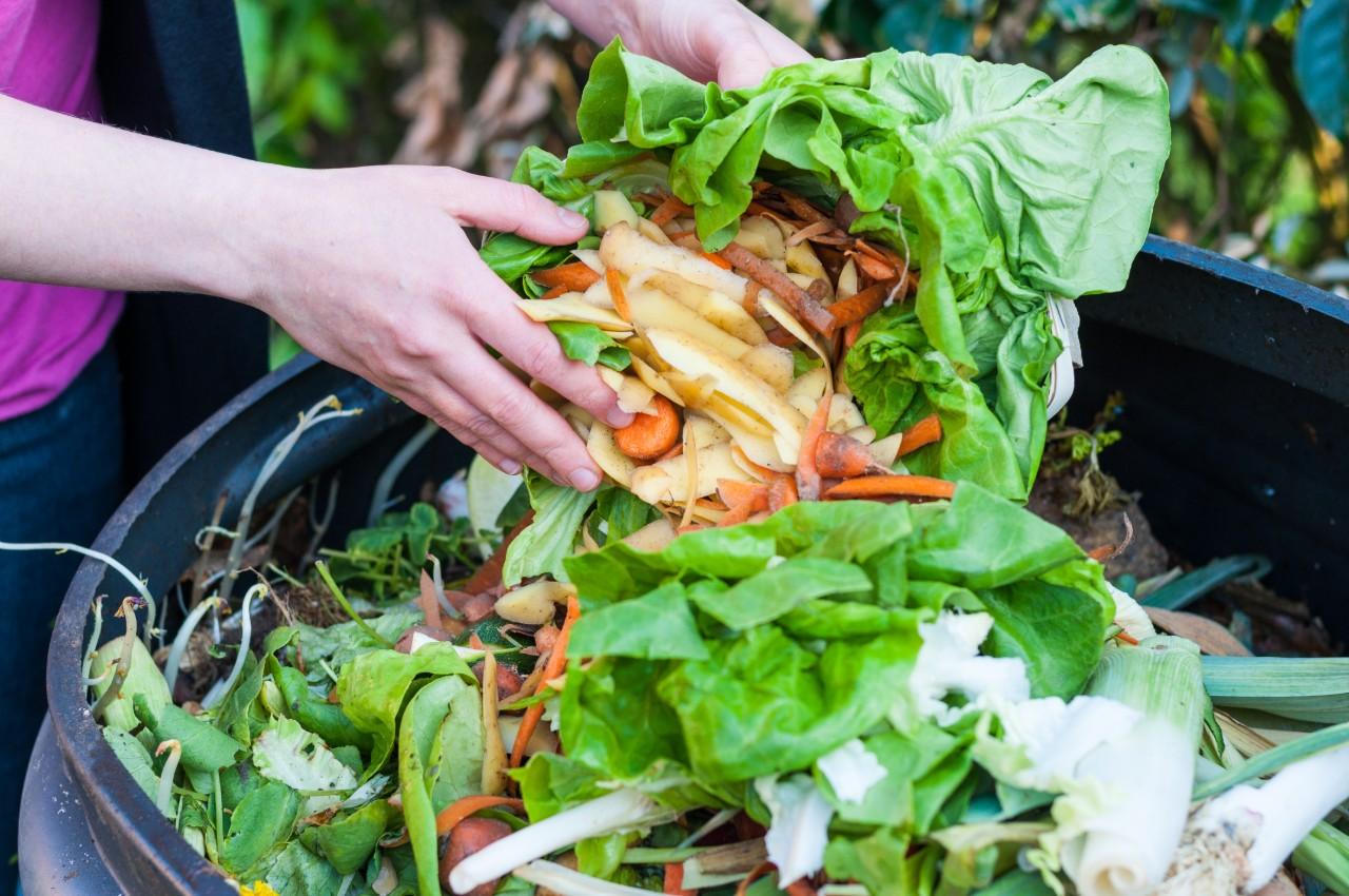 Colombia sanciona ley contra el desperdicio de alimentos