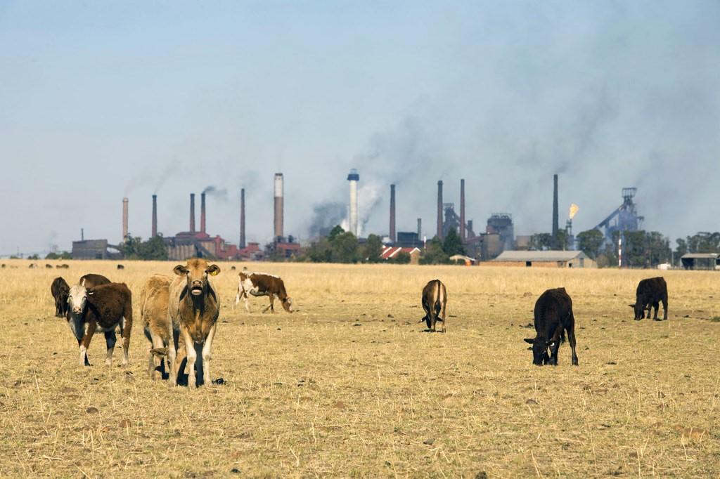 Expertos advierten que el cambio climático pondrá en riesgo el agua y la comida del planeta
