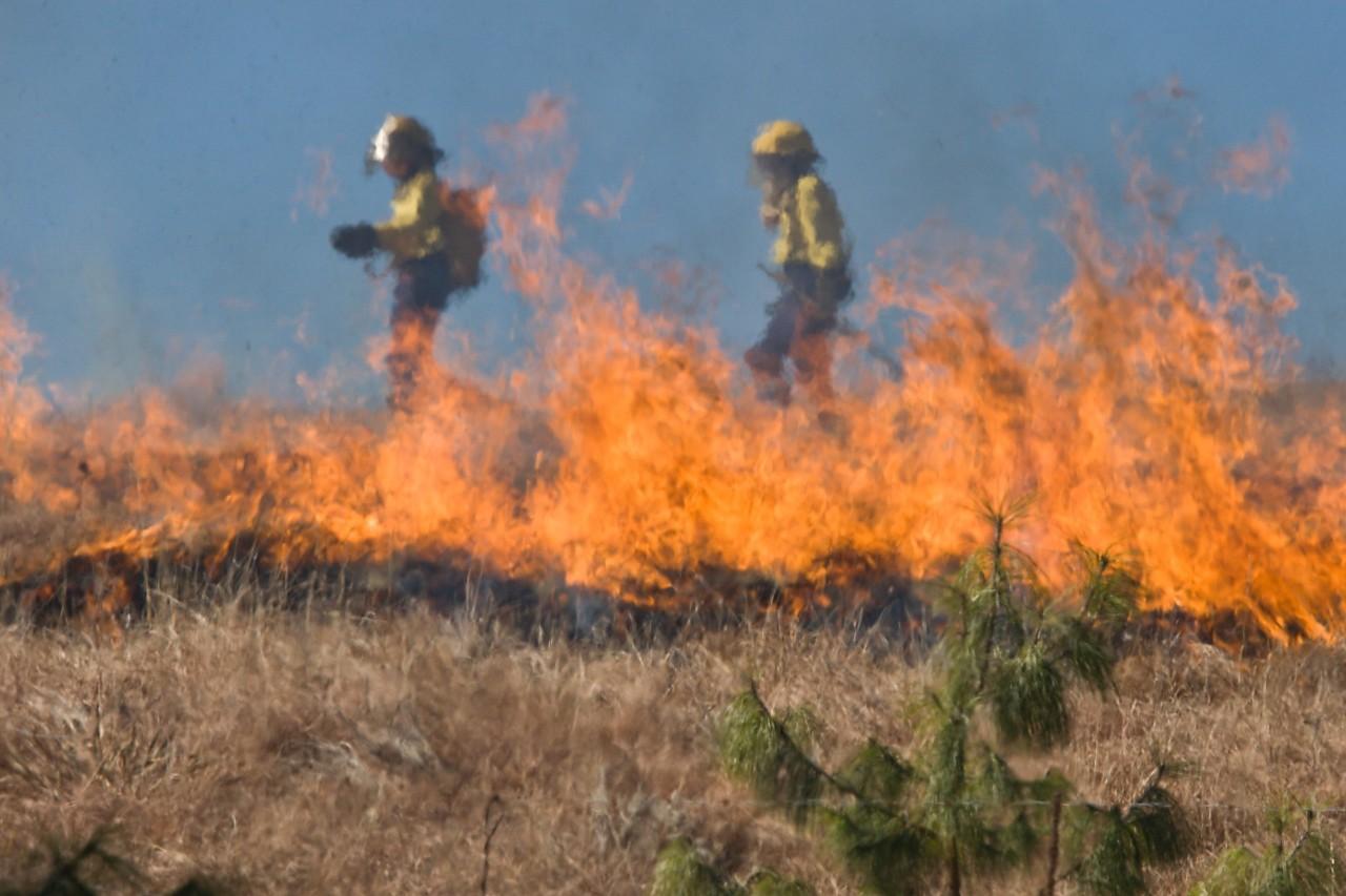 PNUD apoyará crisis de incendios en Bolivia