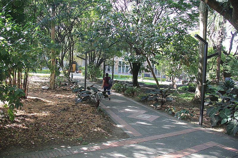 Vegetación refresca el microclima urbano