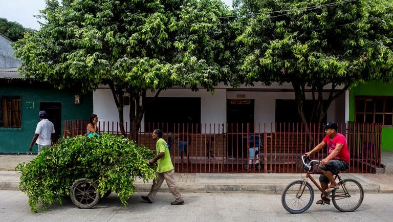 Identifican los retos del Plan Integral de Movilidad Urbana Sustentable de David, Panamá