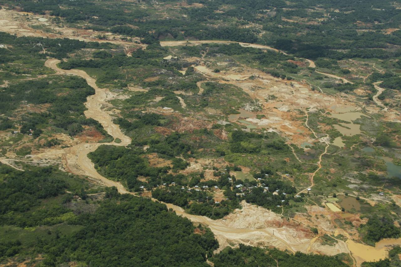El lado oscuro de la deforestación en Latinoamérica: legalidad e ilegalidad contra nuestros bosques