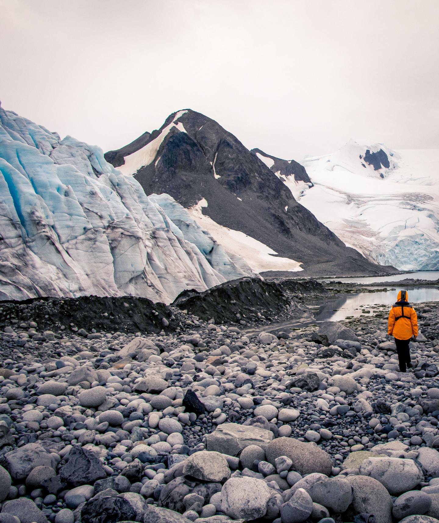 La Antártida está más afectada por los humanos de lo que se pensaba