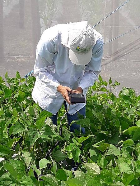 Cultivar más con menos agua, reto futuro para la agricultura