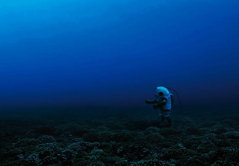 Mission Blue: la urgencia de salvar los océanos