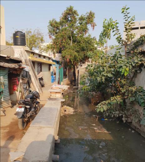 Cómo la naturaleza desinfecta 42 millones de toneladas de desechos humanos en las ciudades