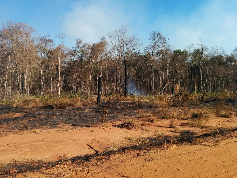 La Amazonia brasileña liberó más carbono del que almacenó en la década de 2010